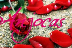 Anjocas3